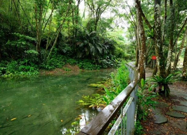 生態湧泉區